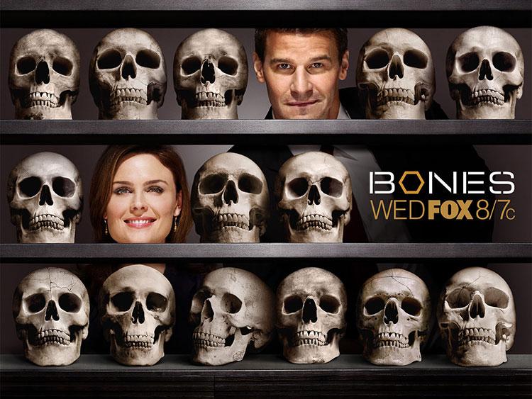 bones-news_01